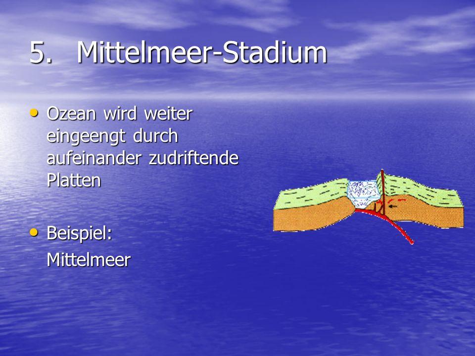 5.Mittelmeer-Stadium Ozean wird weiter eingeengt durch aufeinander zudriftende Platten Ozean wird weiter eingeengt durch aufeinander zudriftende Platt