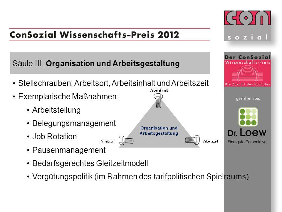 Säule III: Organisation und Arbeitsgestaltung Stellschrauben: Arbeitsort, Arbeitsinhalt und Arbeitszeit Exemplarische Maßnahmen: Arbeitsteilung Belegu