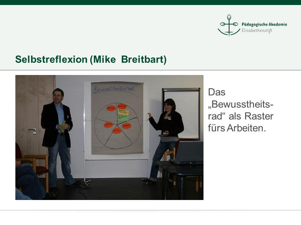 Selbstreflexion (Mike Breitbart) Das Bewusstheits- rad als Raster fürs Arbeiten.