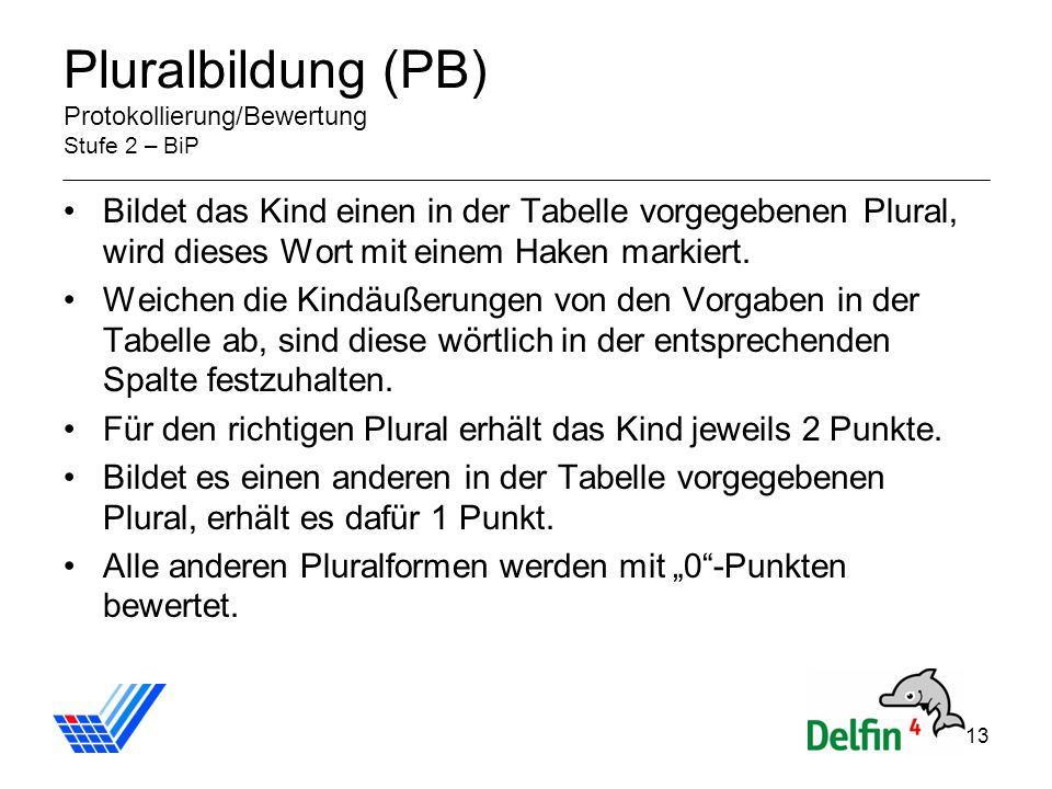 13 Pluralbildung (PB) Protokollierung/Bewertung Stufe 2 – BiP Bildet das Kind einen in der Tabelle vorgegebenen Plural, wird dieses Wort mit einem Haken markiert.