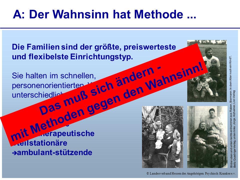 © Landesverband Hessen der Angehörigen Psychisch Kranker e.v. Die Familien sind der größte, preiswerteste und flexibelste Einrichtungstyp. Sie halten
