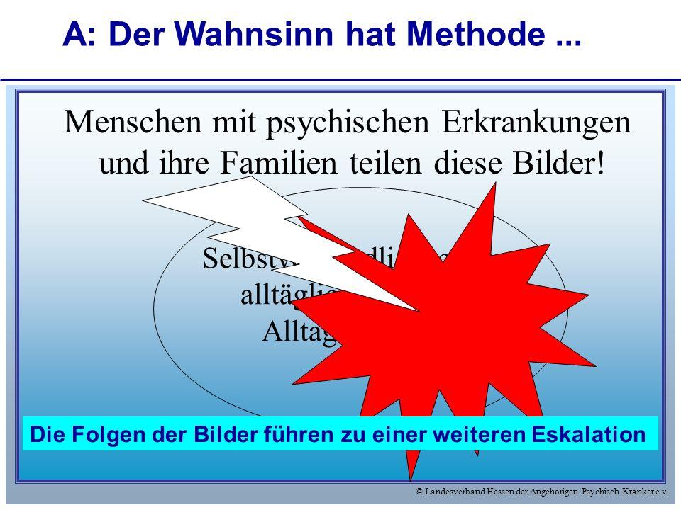 © Landesverband Hessen der Angehörigen Psychisch Kranker e.v. Menschen mit psychischen Erkrankungen und ihre Familien teilen diese Bilder! Selbstverst
