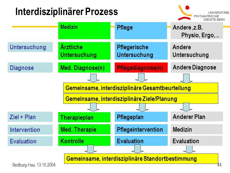 UNIVERSITÄRE PSYCHIATRISCHE DIENSTE BERN Bedburg-Hau, 13.10.2004 44 Interdisziplinärer Prozess Medizin Ärztliche Untersuchung Med. Diagnose(n) Therapi