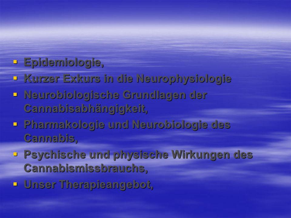 Epidemiologie, Epidemiologie, Kurzer Exkurs in die Neurophysiologie Kurzer Exkurs in die Neurophysiologie Neurobiologische Grundlagen der Cannabisabhä