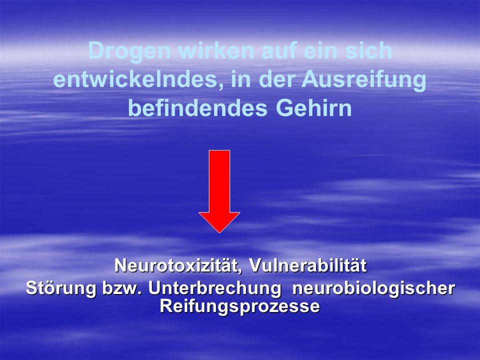 Neurotoxizität, Vulnerabilität Störung bzw. Unterbrechung neurobiologischer Reifungsprozesse Drogen wirken auf ein sich entwickelndes, in der Ausreifu
