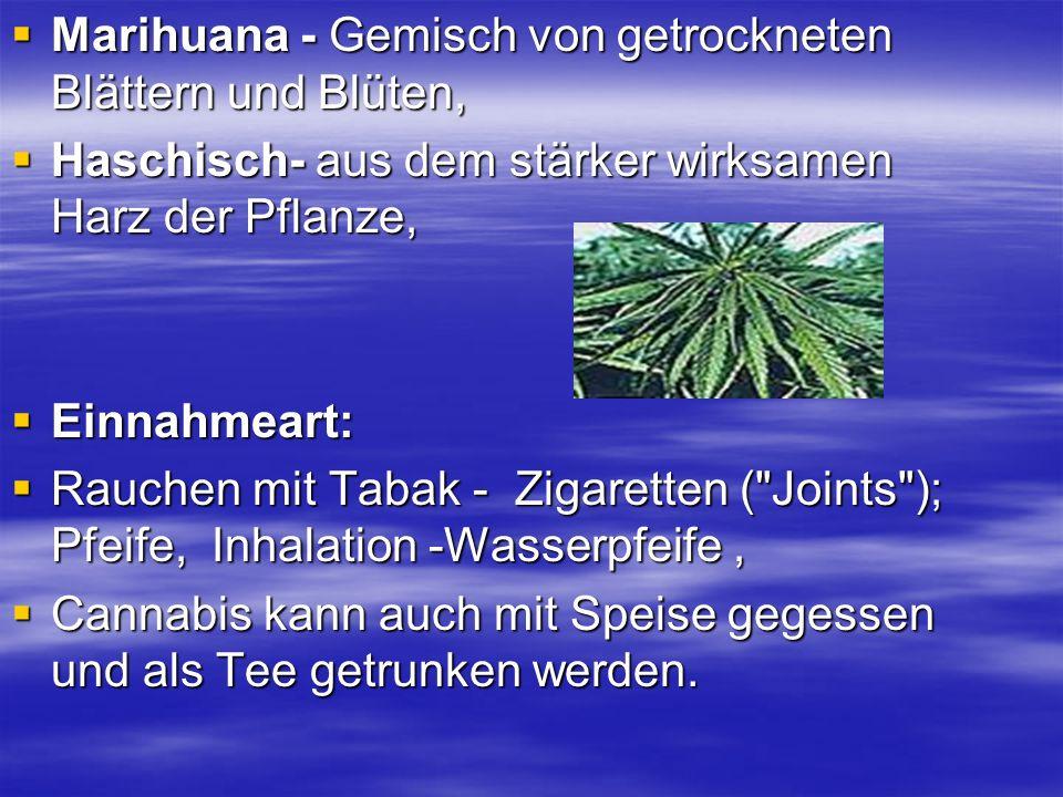 Marihuana - Gemisch von getrockneten Blättern und Blüten, Marihuana - Gemisch von getrockneten Blättern und Blüten, Haschisch- aus dem stärker wirksam
