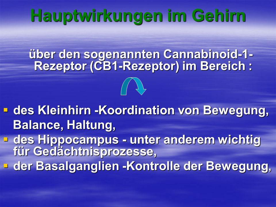 Hauptwirkungen im Gehirn über den sogenannten Cannabinoid-1- Rezeptor (CB1-Rezeptor) im Bereich : über den sogenannten Cannabinoid-1- Rezeptor (CB1-Re