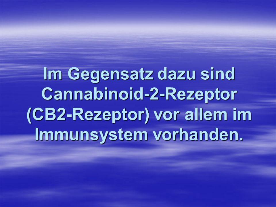 Im Gegensatz dazu sind Cannabinoid-2-Rezeptor (CB2-Rezeptor) vor allem im Immunsystem vorhanden.
