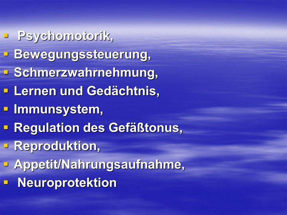 Psychomotorik, Psychomotorik, Bewegungssteuerung, Bewegungssteuerung, Schmerzwahrnehmung, Schmerzwahrnehmung, Lernen und Gedächtnis, Lernen und Gedäch