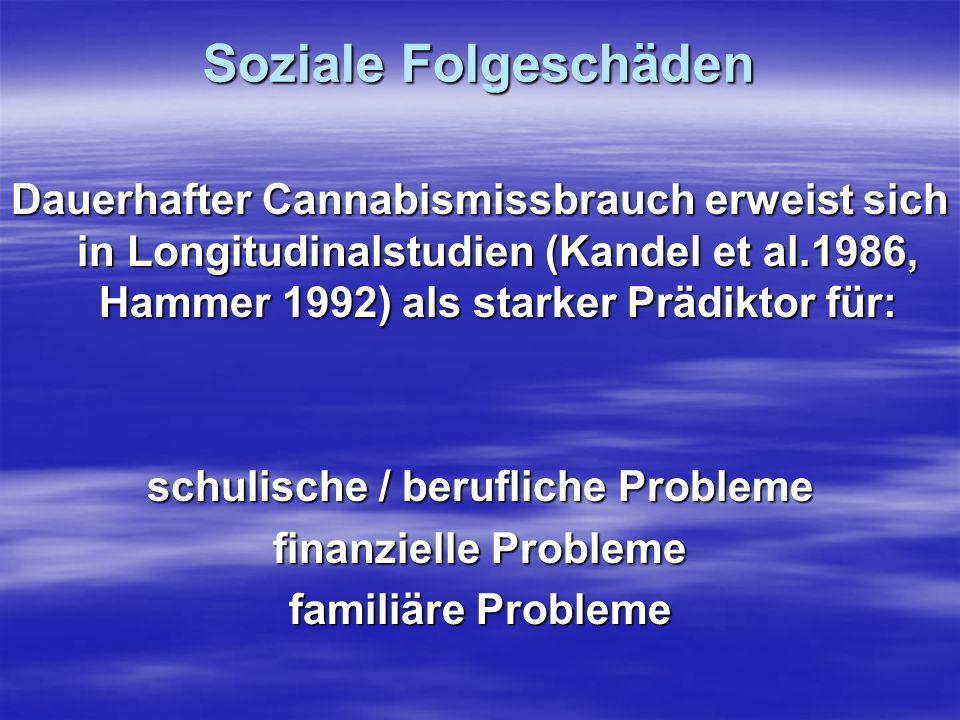 Soziale Folgeschäden Dauerhafter Cannabismissbrauch erweist sich in Longitudinalstudien (Kandel et al.1986, Hammer 1992) als starker Prädiktor für: sc