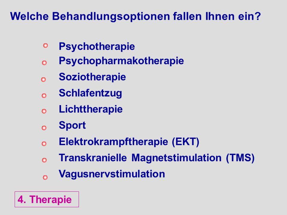 Welche Behandlungsoptionen fallen Ihnen ein? Psychotherapie Psychopharmakotherapie Soziotherapie Schlafentzug Lichttherapie Sport Elektrokrampftherapi