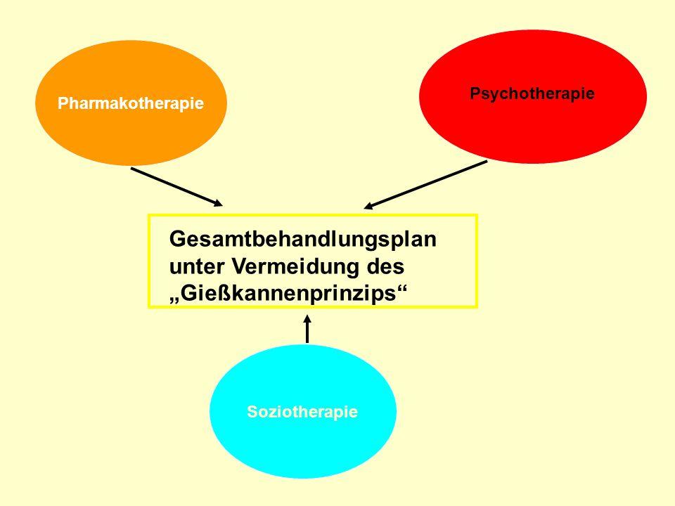 Pharmakotherapie Psychotherapie Soziotherapie Gesamtbehandlungsplan unter Vermeidung des Gießkannenprinzips
