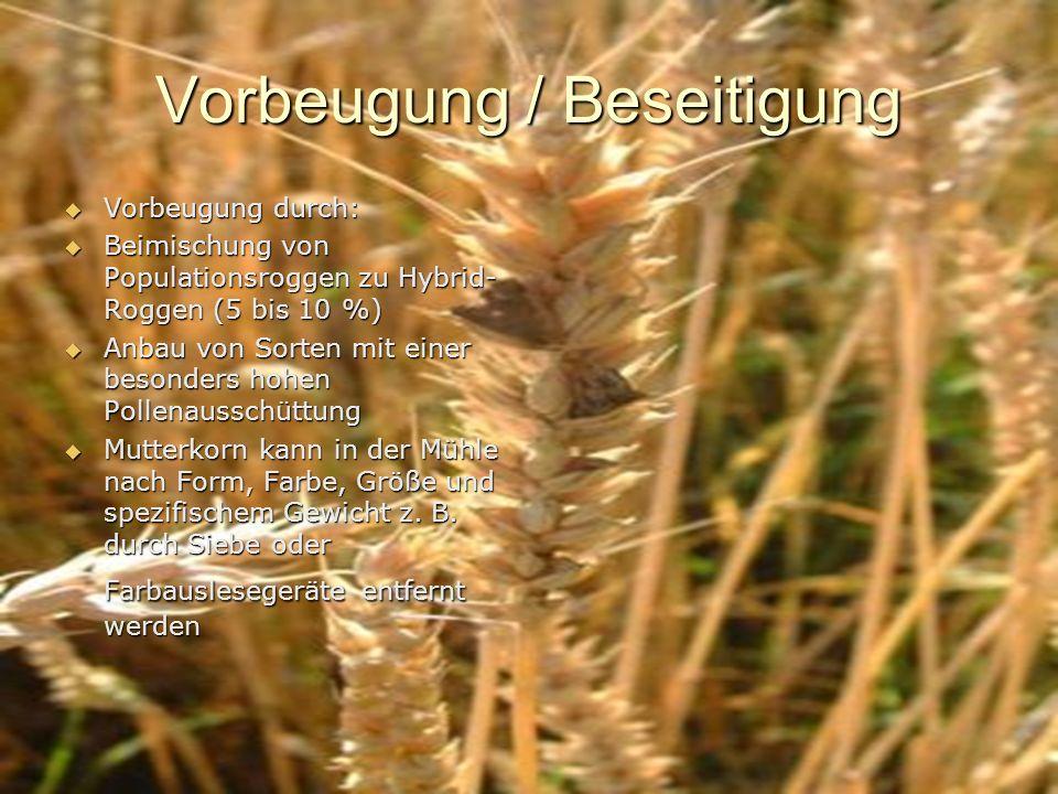 Vorbeugung / Beseitigung Vorbeugung durch: Vorbeugung durch: Beimischung von Populationsroggen zu Hybrid- Roggen (5 bis 10 %) Beimischung von Populati