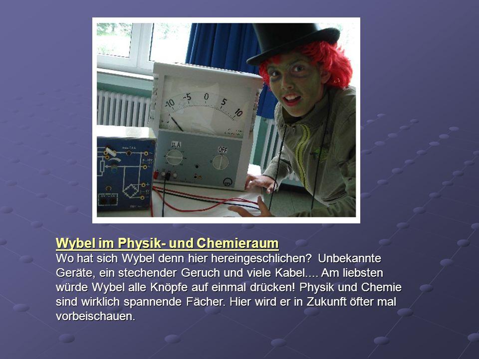 Wybel im Physik- und Chemieraum Wo hat sich Wybel denn hier hereingeschlichen? Unbekannte Geräte, ein stechender Geruch und viele Kabel.... Am liebste