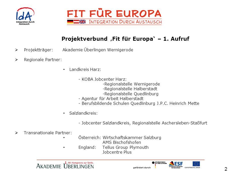 2 Projektverbund Fit für Europa – 1. Aufruf Projektträger: Akademie Überlingen Wernigerode Regionale Partner: Landkreis Harz: - KOBA Jobcenter Harz: -