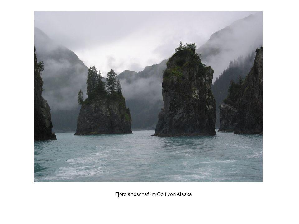 Fjordlandschaft im Golf von Alaska