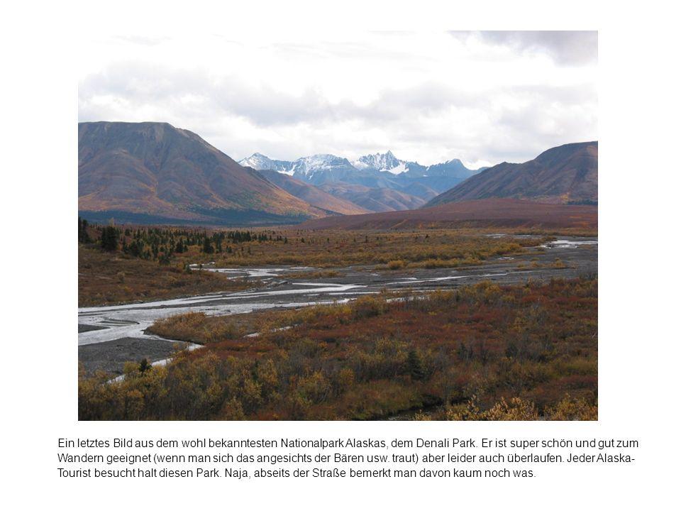 Ein letztes Bild aus dem wohl bekanntesten Nationalpark Alaskas, dem Denali Park.