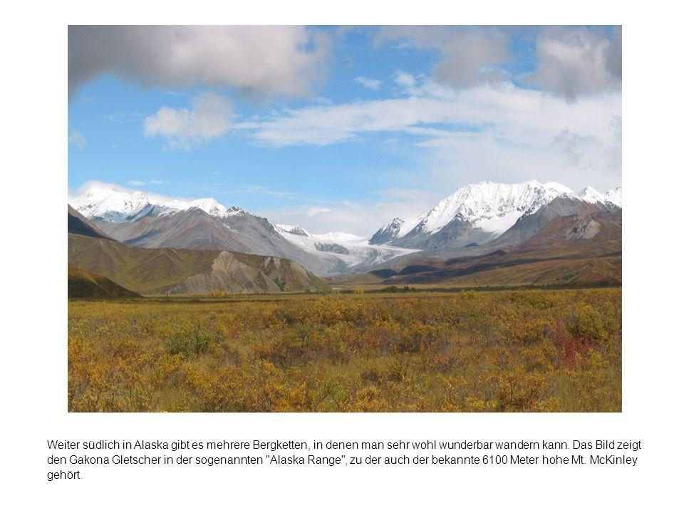 Weiter südlich in Alaska gibt es mehrere Bergketten, in denen man sehr wohl wunderbar wandern kann.