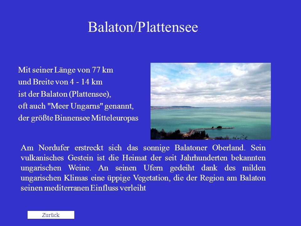 Balaton/Plattensee Mit seiner Länge von 77 km und Breite von 4 - 14 km ist der Balaton (Plattensee), oft auch