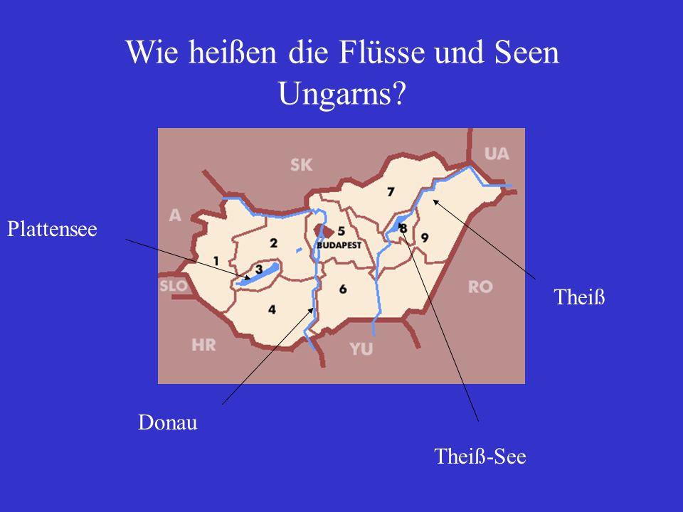 Wie heißen die Flüsse und Seen Ungarns? Donau Theiß Plattensee Theiß-See