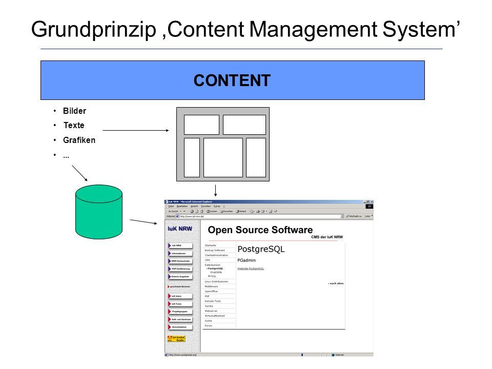 Nutzenbetrachtungen von Content Management Systemen Trennung von Inhalt und Layout -> Arbeitsteilung Verwendung von Templates -> Vereinheitlichung Schnellere Veröffentlichung von Webseiten Aber: Schwierigkeiten bei der Erarbeitung einer gemeinsamen Grundstruktur für eine Layoutvorlage Vereinheitlichung versus individuelle Gestaltungsmöglichkeiten
