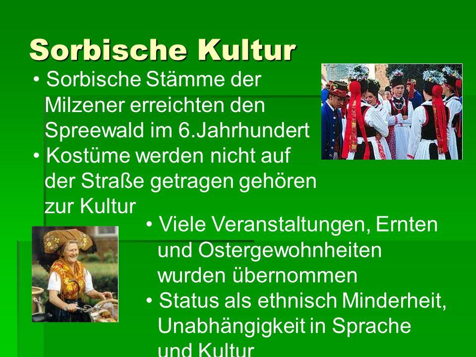 Sorbische Kultur Sorbische Stämme der Milzener erreichten den Spreewald im 6.Jahrhundert Kostüme werden nicht auf der Straße getragen gehören zur Kult