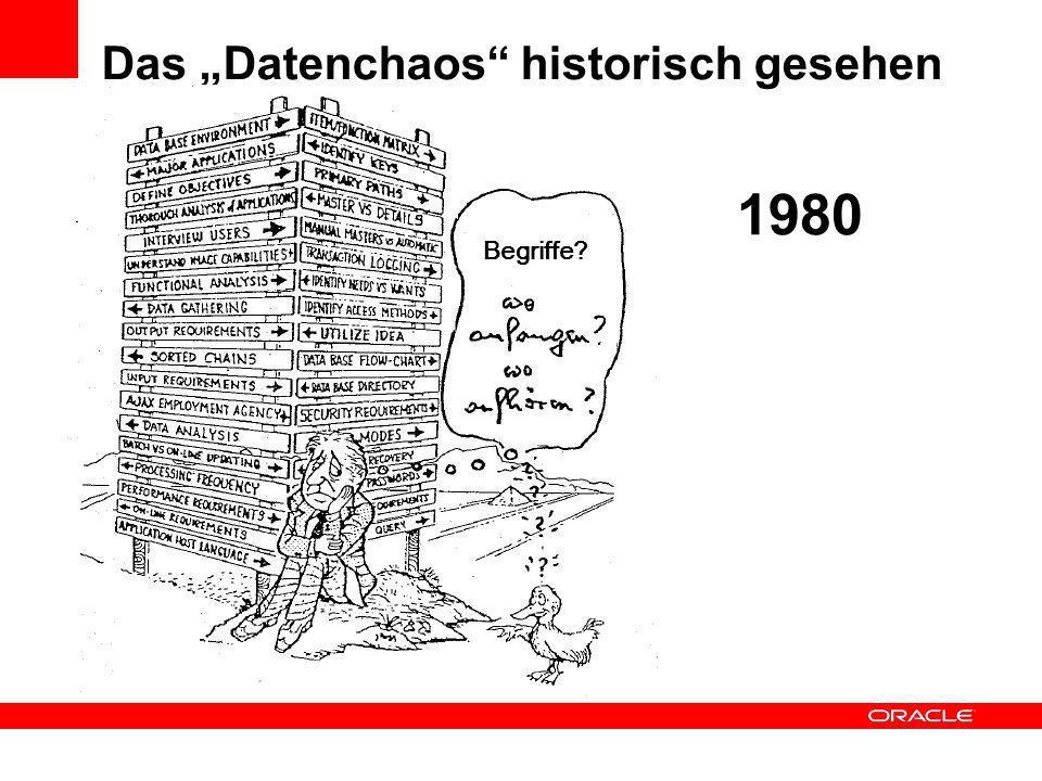 Das Datenchaos historisch gesehen 1980 Begriffe?