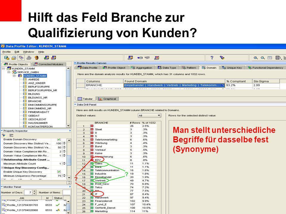 Hilft das Feld Branche zur Qualifizierung von Kunden? Man stellt unterschiedliche Begriffe für dasselbe fest (Synonyme) ? ?