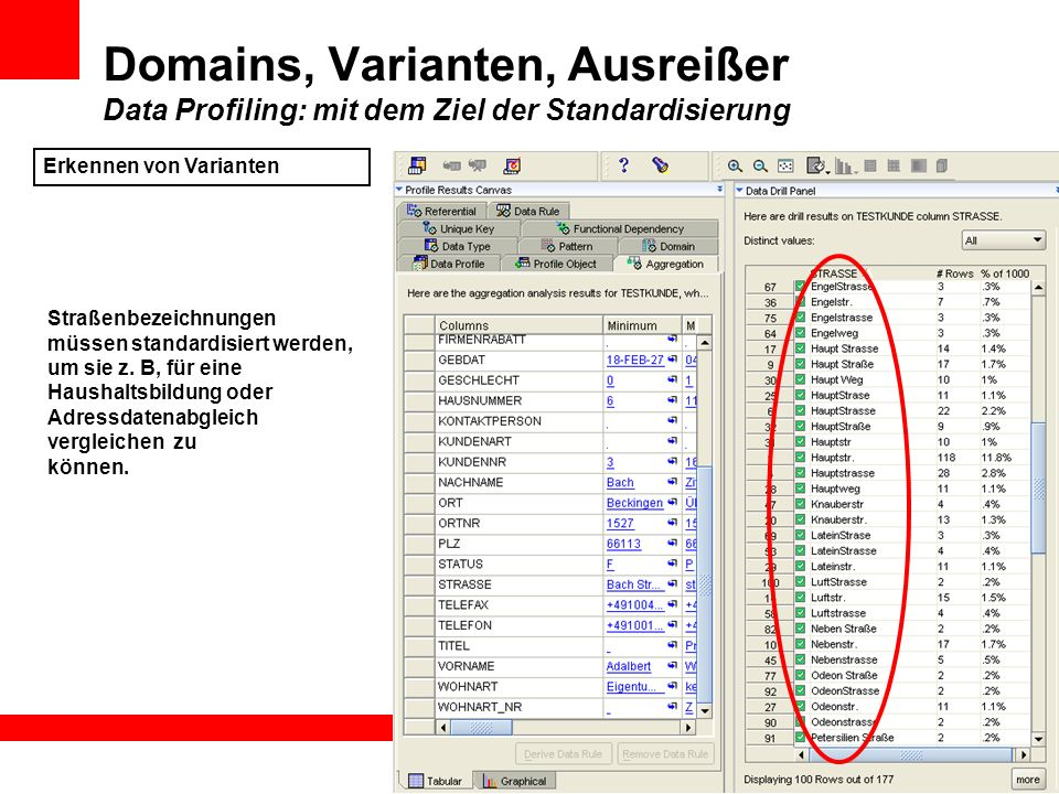 Domains, Varianten, Ausreißer Data Profiling: mit dem Ziel der Standardisierung Erkennen von Varianten Straßenbezeichnungen müssen standardisiert werd
