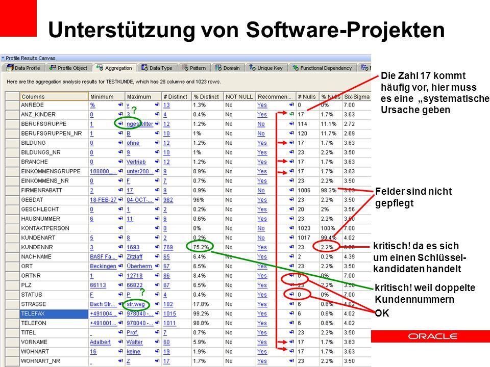 Unterstützung von Software-Projekten kritisch! da es sich um einen Schlüssel- kandidaten handelt Felder sind nicht gepflegt Die Zahl 17 kommt häufig v