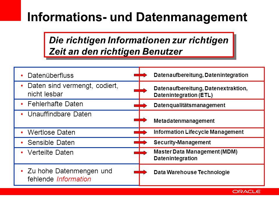 Informations- und Datenmanagement Datenüberfluss Daten sind vermengt, codiert, nicht lesbar Fehlerhafte Daten Unauffindbare Daten Wertlose Daten Sensi