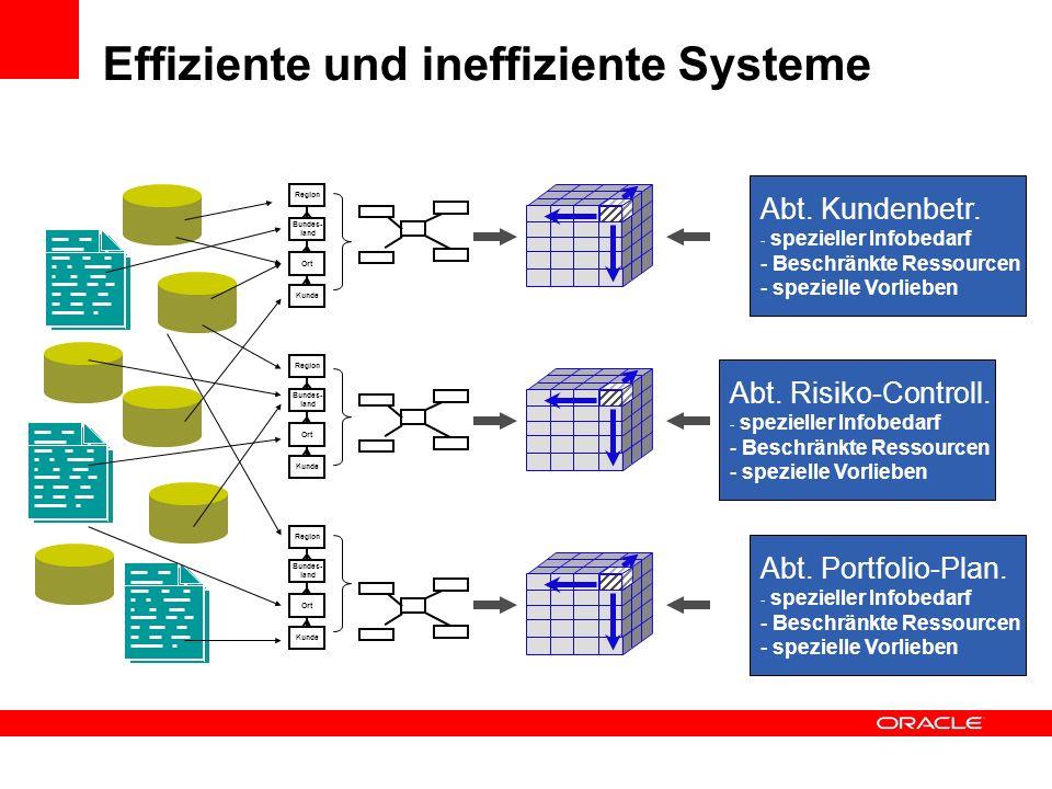 Effiziente und ineffiziente Systeme Abt. Kundenbetr. - spezieller Infobedarf - Beschränkte Ressourcen - spezielle Vorlieben Abt. Risiko-Controll. - sp