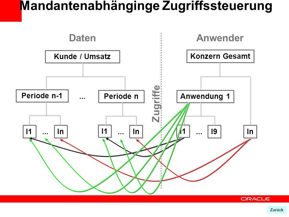 Kunde / Umsatz Periode n-1 Periode n... I1In... I1 In... Anwendung 1 I1 I9... In DatenAnwender Zugriffe Konzern Gesamt Mandantenabhänginge Zugriffsste