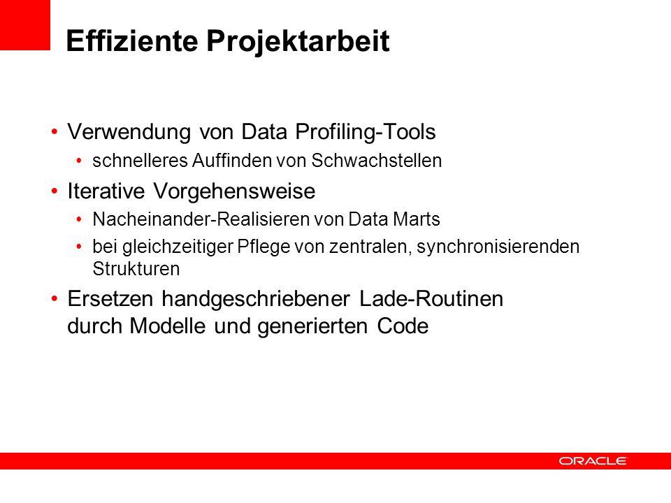Effiziente Projektarbeit Verwendung von Data Profiling-Tools schnelleres Auffinden von Schwachstellen Iterative Vorgehensweise Nacheinander-Realisiere