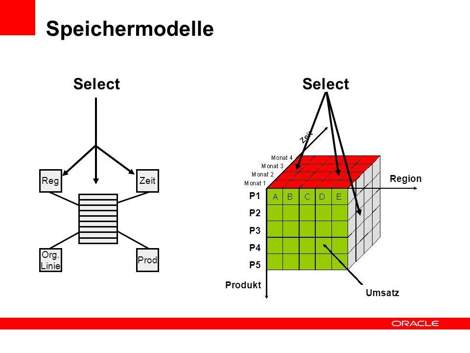 RegZeit Org. Linie Prod Umsatz P1 P2 P3 P4 P5 Region Produkt Select Speichermodelle