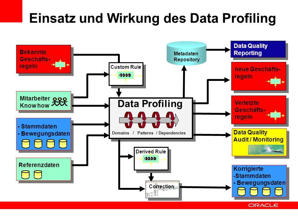 Einsatz und Wirkung des Data Profiling Mitarbeiter Know how - Stammdaten - Bewegungsdaten Referenzdaten Bekannte Geschäfts- regeln neue Geschäfts- reg