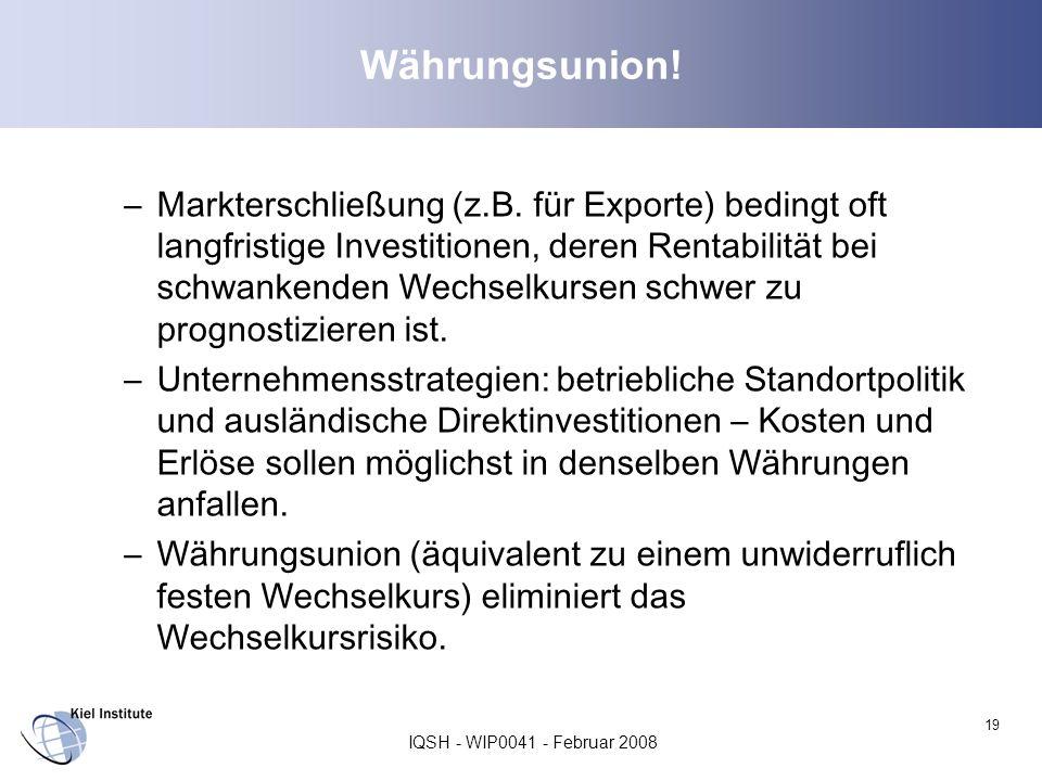 IQSH - WIP0041 - Februar 2008 19 Währungsunion! –Markterschließung (z.B. für Exporte) bedingt oft langfristige Investitionen, deren Rentabilität bei s