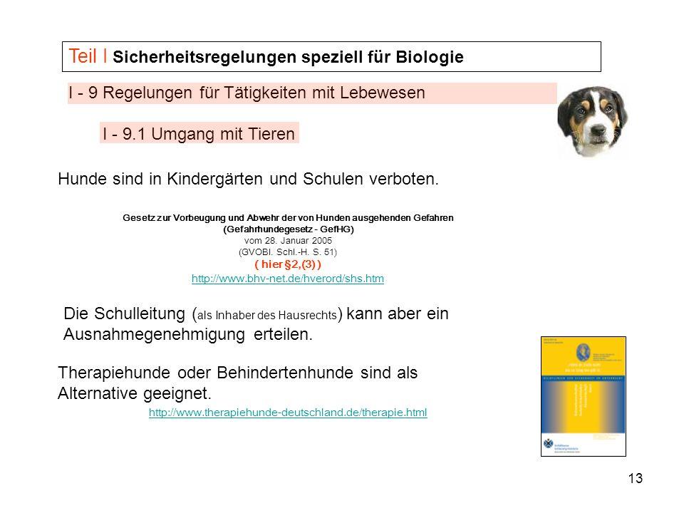 13 I - 9 Regelungen für Tätigkeiten mit Lebewesen I - 9.1 Umgang mit Tieren Teil I Sicherheitsregelungen speziell für Biologie Hunde sind in Kindergär