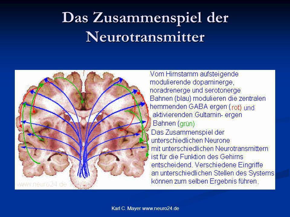 Karl C. Mayer www.neuro24.de Das Zusammenspiel der Neurotransmitter