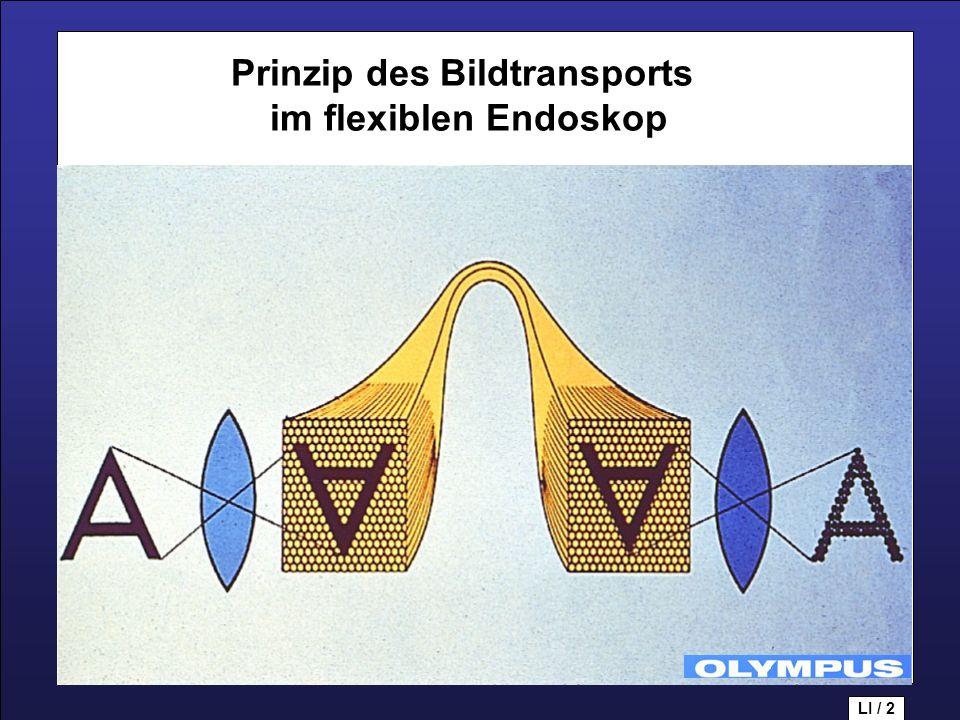 Prinzip des Bildtransports im flexiblen Endoskop LI / 2