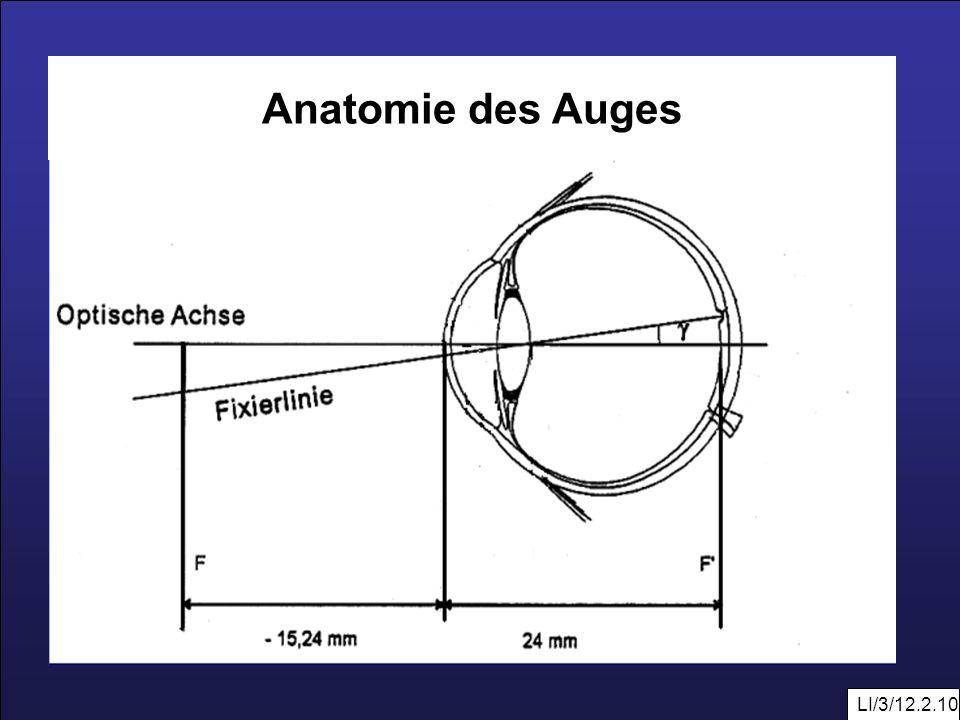 LI/3/12.2.10 Anatomie des Auges