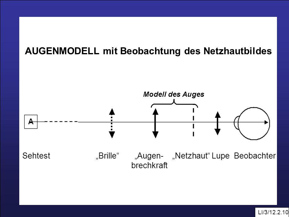 LI/3/12.2.10 Modell des Auges AUGENMODELL mit Beobachtung des Netzhautbildes Sehtest Brille Augen- Netzhaut Lupe Beobachter brechkraft