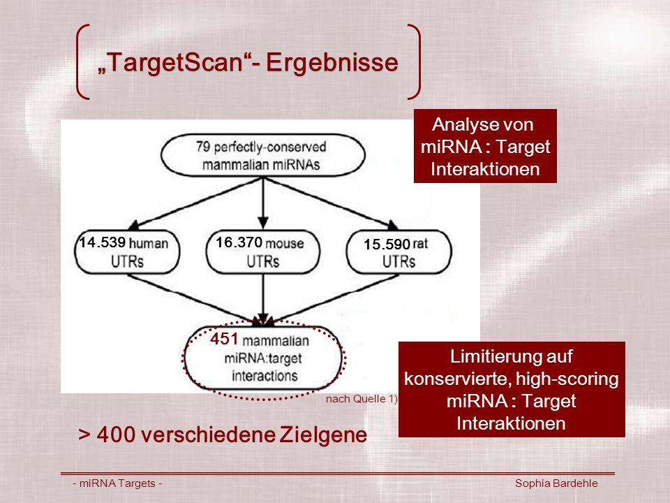 TargetScan- Ergebnisse - miRNA Targets - Sophia Bardehle Analyse von miRNA : Target Interaktionen 14.53916.370 15.590 451 Limitierung auf konservierte