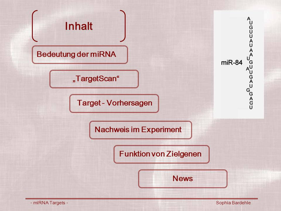 - miRNA Targets - Sophia Bardehle Bedeutung der miRNA endogene, ~22-nt, nicht-codierende RNA in Pflanzen und Tierzellen Funktionen: molekulare Mechanismen unklar bis 2003 miRNA Targets in Vertebraten unbekannt (http://www.ambion.com/techlib/resources/miRNA/mirna_exp.html)