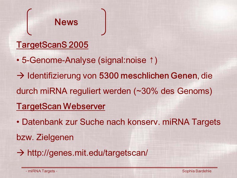 News - miRNA Targets - Sophia Bardehle TargetScanS 2005 5-Genome-Analyse (signal:noise ) Identifizierung von 5300 meschlichen Genen, die durch miRNA r