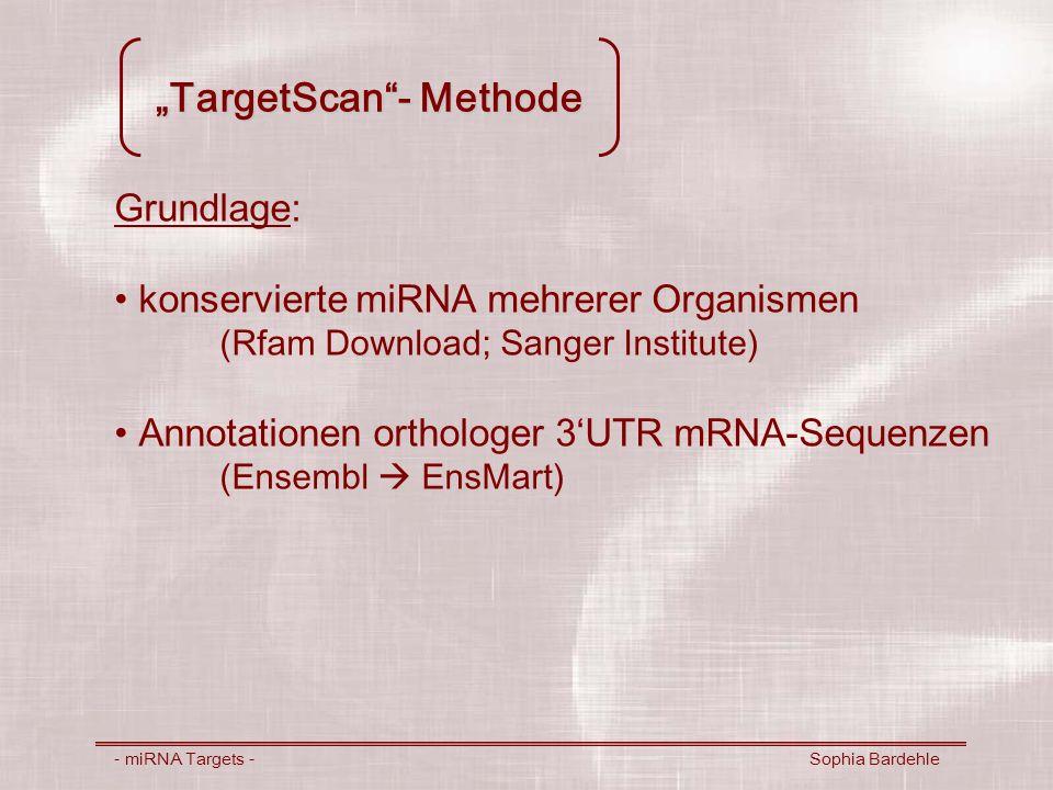 TargetScan- Methode - miRNA Targets - Sophia Bardehle Grundlage: konservierte miRNA mehrerer Organismen (Rfam Download; Sanger Institute) Annotationen