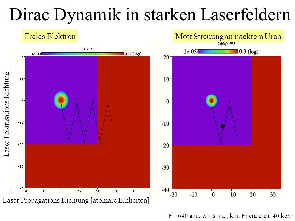 Dirac Dynamik in starken Laserfeldern Freies ElektronMott Streuung an nacktem Uran Laser Polarisations Richtung Laser Propagations Richtung [atomare E