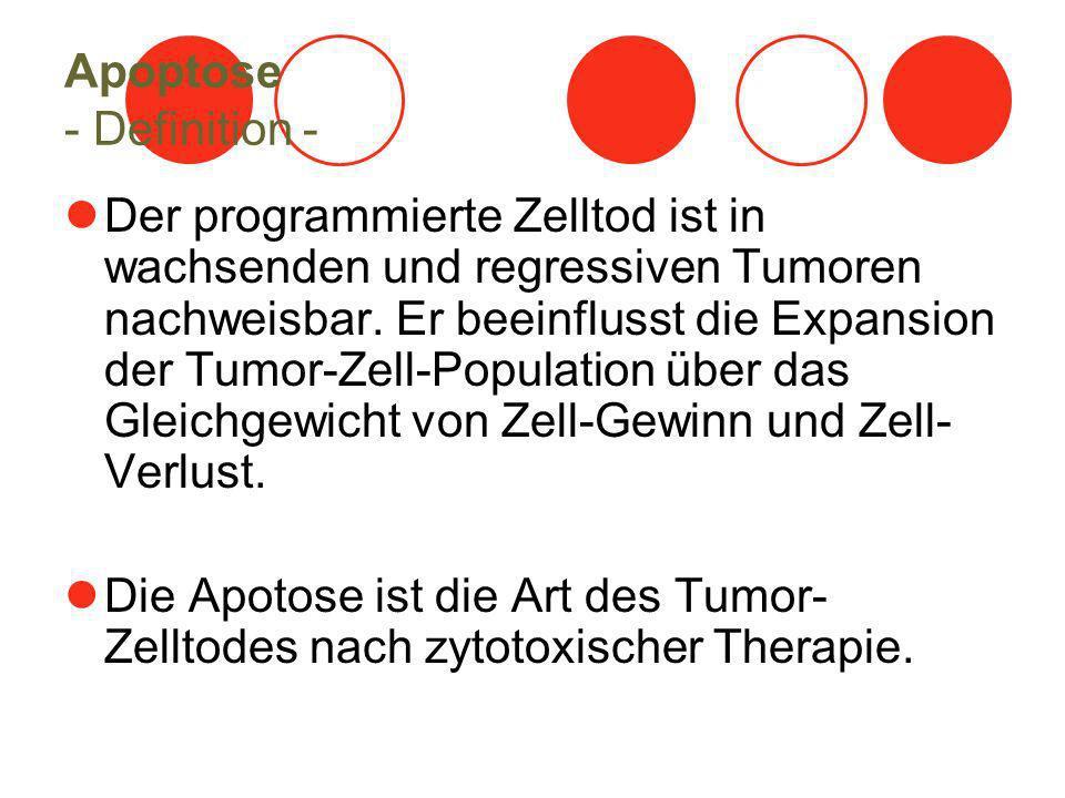 Apoptose - Definition - Der programmierte Zelltod ist in wachsenden und regressiven Tumoren nachweisbar.