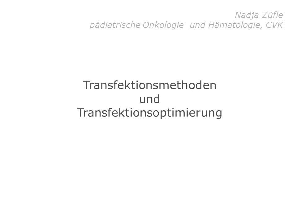 CaPO 4 -Transfektion Prinzip der CaPO 4 -Transfektion: