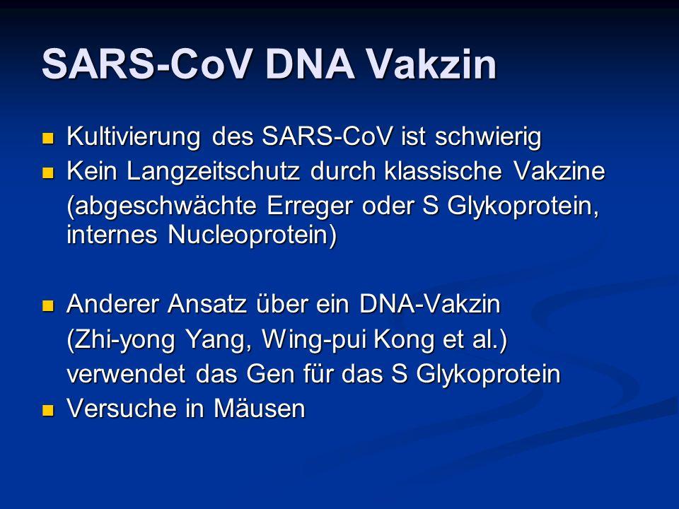 SARS-CoV DNA Vakzin Kultivierung des SARS-CoV ist schwierig Kultivierung des SARS-CoV ist schwierig Kein Langzeitschutz durch klassische Vakzine Kein Langzeitschutz durch klassische Vakzine (abgeschwächte Erreger oder S Glykoprotein, internes Nucleoprotein) Anderer Ansatz über ein DNA-Vakzin Anderer Ansatz über ein DNA-Vakzin (Zhi-yong Yang, Wing-pui Kong et al.) verwendet das Gen für das S Glykoprotein Versuche in Mäusen Versuche in Mäusen